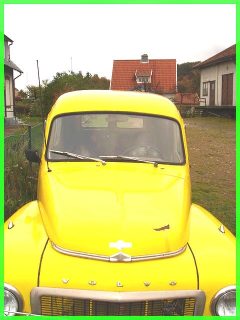 Yellow Martini Volvo on the grass / Volvo jaune sur pelouse