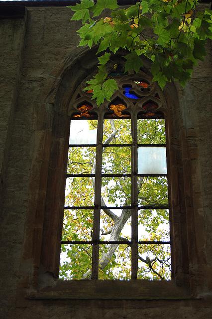 Gotiko kaj naturo