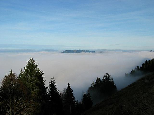 Nebelgrenze bei ca. 1100 m