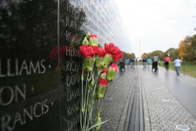 06.VietnamWarVeteransMemorial.WDC.14nov07