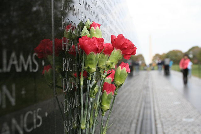 07.VietnamWarVeteransMemorial.WDC.14nov07