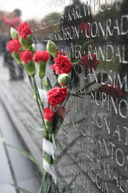 10.VietnamWarVeteransMemorial.WDC.14nov07