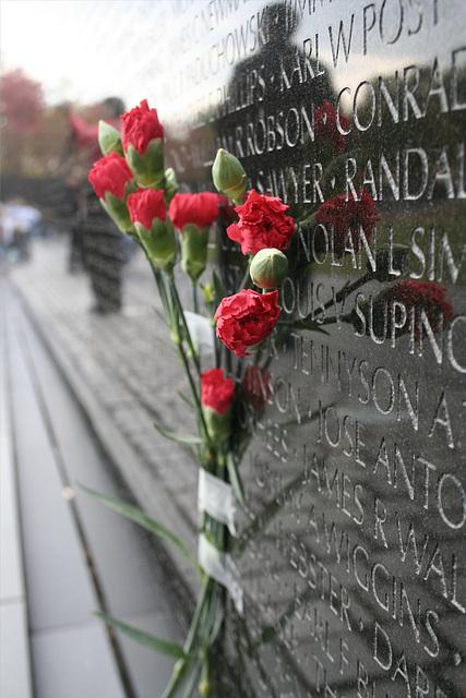 11.VietnamWarVeteransMemorial.WDC.14nov07