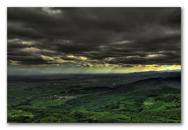 la plaine d'Alsace