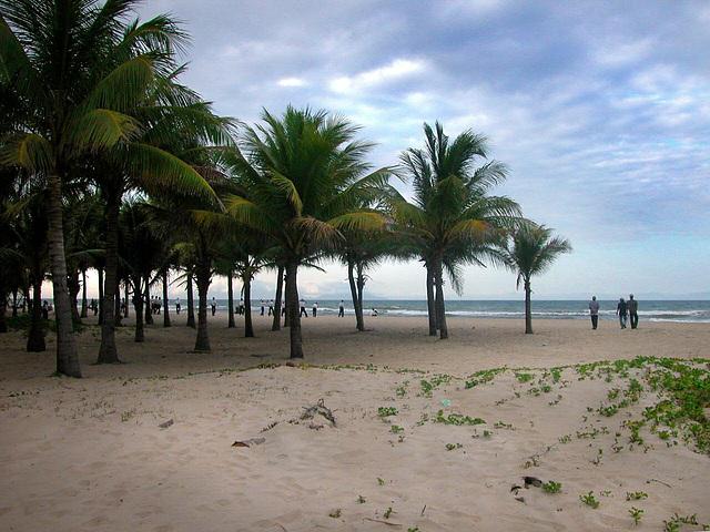 Cua Dai Beach near Hội An