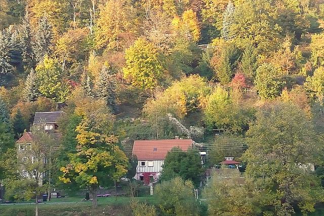 Mein Haus - mia domo - ma maison - Oktober 2008