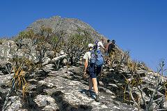 Climbing Chambe