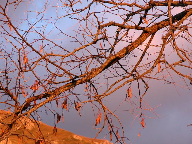 è autunno