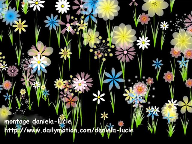 Jeu : Parterre de fleurs sous la souris