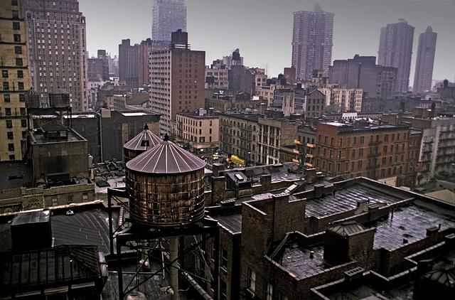 Rainy Morning Roofs