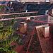 Graz - Roofs