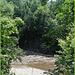 Nature sauvage / Wild nature - Vermont, USA / 6 août 2008.