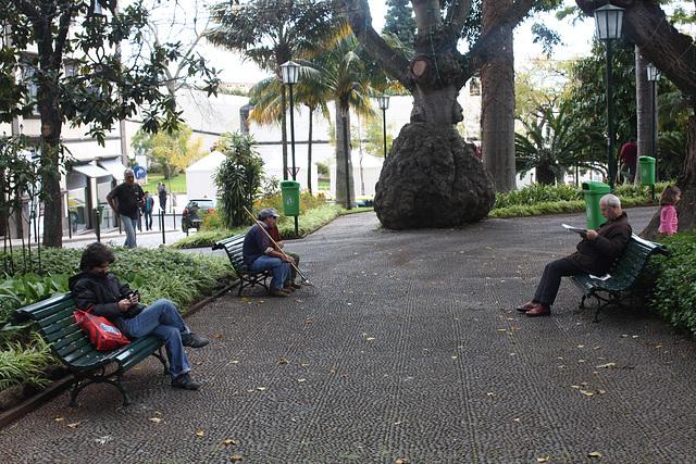 mittags im Jardim Muncipal
