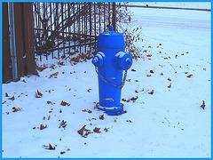 Borne à incendie dans le blanc / Blue hydrant in a white world