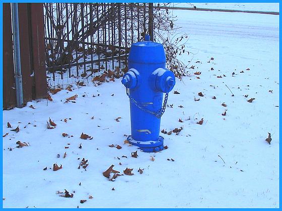 Borne à incendie dans le blanc / Blue hydrant in a white world -   Dans ma ville- hometown- 9 décembre 2008.