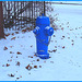 Borne à incendie dans le blanc / Blue hydrant in a white world -   Dans ma ville / Hometown - 9 décembre 2008.