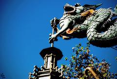 Dragonlight / Luz del dragón