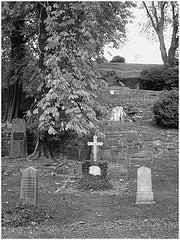 Cimetière de Helsingborg /  Helsingborg cemetery-  Suède / Sweden. - Down the hill in black & white- Au bas de la colline en noir et blanc.