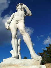 Michelangelo's 'David' - Forest Lawn Glendale (2053)