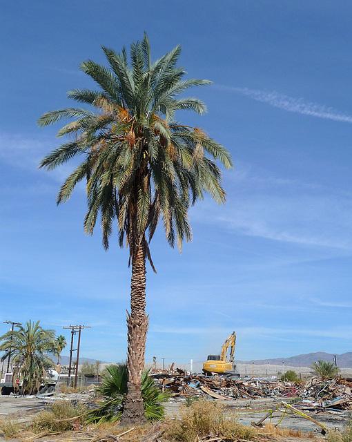 North Shore Motel Demolition (2130)