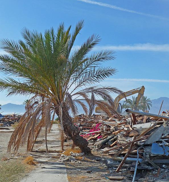North Shore Motel Demolition (2144)