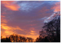 Frimley Sunrise 2