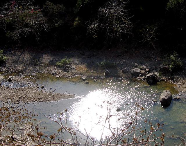 Eclat de soleil dans l'eau