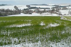 Winter im Osterzgebirge - 2008/2019