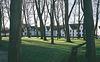 Bruges Trees 2 MP4