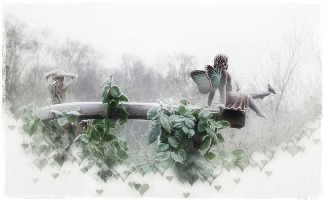 Ice fairies ♥