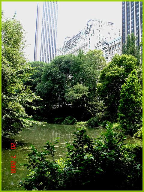 Central park-  Étang et édifices modernes - Buildings & pond- New-York City.
