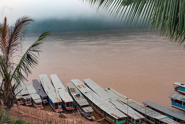 Morning mist over the Mekong river
