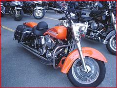 Harley Davidson / Cegep de Rimouski -  Québec, Canada. 23 juillet 2005.