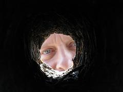 Self In Woodpecker Hole (1569)