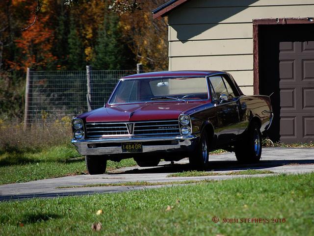 Pontiac Cool