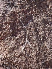 Wilhelm's Metate Ranch Petroglyph (2184)