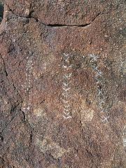 Wilhelm's Metate Ranch Petroglyph (2186)