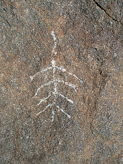 Wilhelm's Metate Ranch Petroglyph (2187)