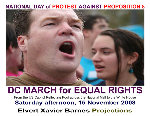 DCMarchForEqualRights.AgainstProp8.WDC.15nov08