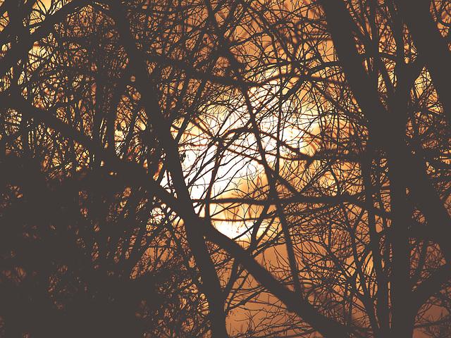 Fuego en el cielo___*J*