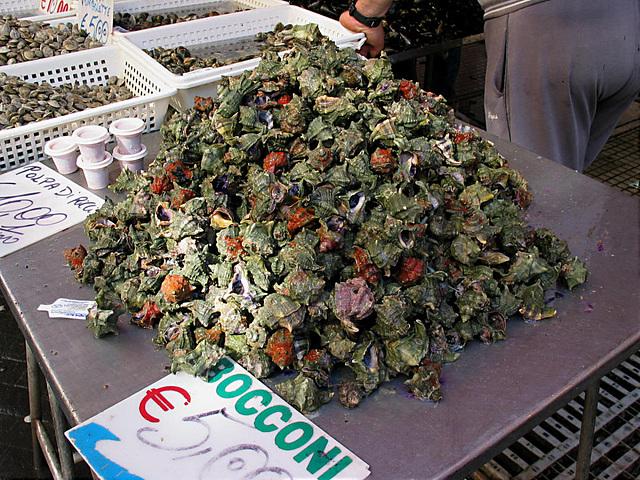 Sicilia - Meereschnecken - Fischmarkt Siracusa