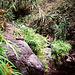 Wanderweg mit Steinmännchen