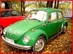 Volkswagen beetle parmi les feuilles d'automne
