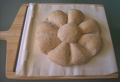 Daisy Loaf (Rolling Pin Method)
