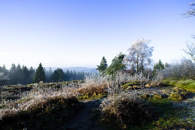 Hermannsweg // Far View 1