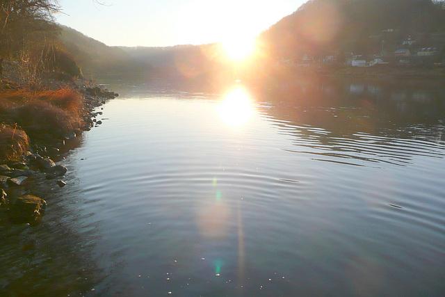 Morgendlicher Weg zur Elbe