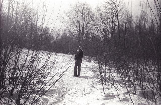 Vtedy v lese