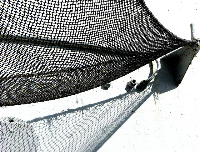 caught in a net
