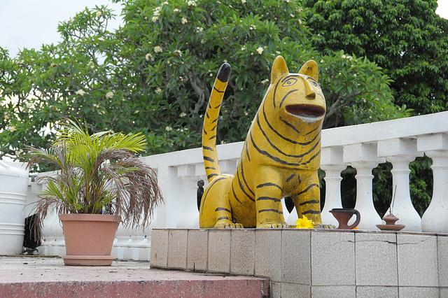Hindu Tiger