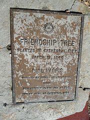 Friendship Tree (2398)